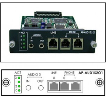 AP-AUD1S2O1 Direct Interface to Amplifier